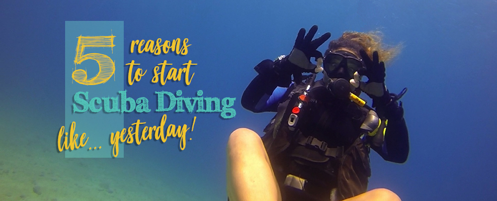 5 Reasons To Start Scuba Diving Right Now!