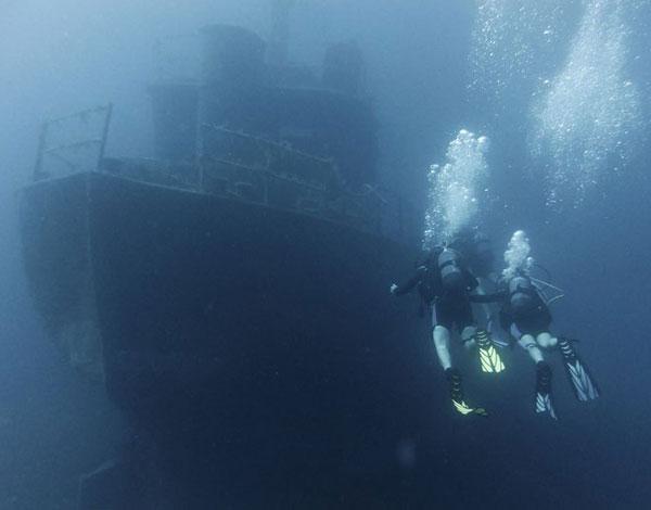 scubseadaisy Kos Go Diving