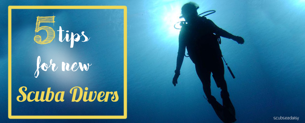 5 Tips for newbie Divers